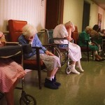 Elder Abuse Takes the Form of Fraud and Theft