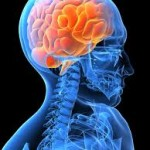 Antidepressants Linked to Higher Cognitive Function Post TBI