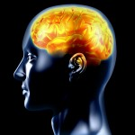 Traumatic Brain Injuries Have a Variety of Causes and Treatments